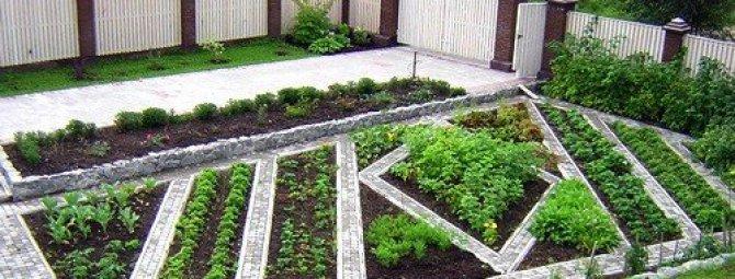 Ландшафтный дизайн огорода: планировка территории + некоторые приемы оформления