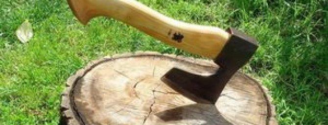 Как сделать топор: технологический процесс от топорища до заточки