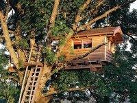 Сооружение домика на дереве своими руками