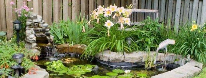 Декоративный водоем на даче: 3 примера устройства своими руками