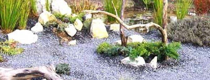 Гравийный сад своими руками - как можно использовать гравий в саду