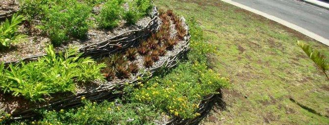 Как разбить цветник на склоне: обустройство наклонной цветочной поляны