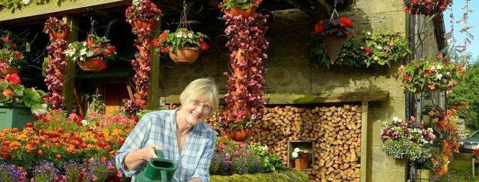 Как разбить красивый цветник перед домом на даче: 5 вариантов на любой вкус