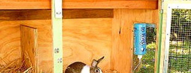 Как сделать крольчатник своими руками: примеры самодельных конструкций