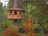 Конструкции домиков на дереве