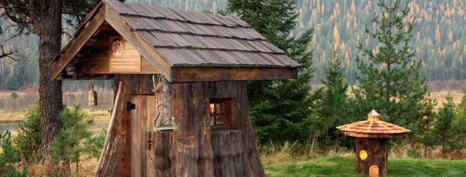 Как украсить пень в саду своими руками: 6 интересных идей для мастеровитых дачников