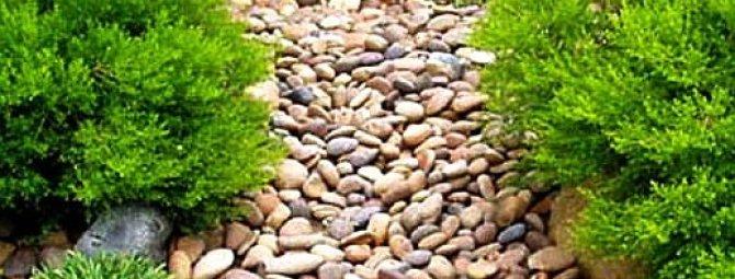 Декоративная галька в саду — дорожки и малые формы для украшения вашего участка