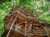 Как устроить домик на дереве своими руками