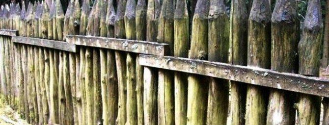 Как сделать забор частокол на своей даче: мой сад — моя крепость
