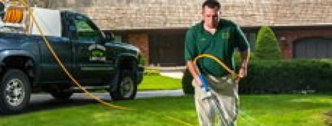Хитрости посадки газона в жаркое лето: как спасти траву от солнца