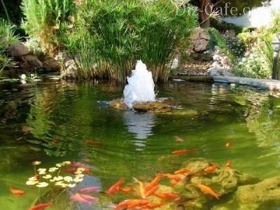 Небольшой фонтан на дачном участке