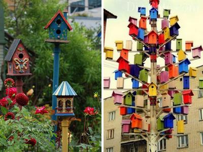 Домики для птиц из разных пород дерева