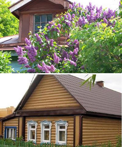 Ландшафтный дизайн деревенского дома