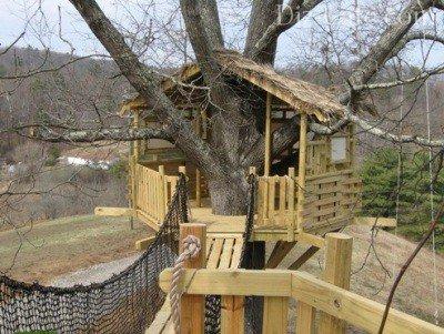 что домик на дереве