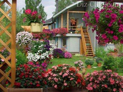 Ампельный сад