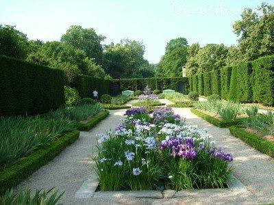Зеленая комната и живая изгородь
