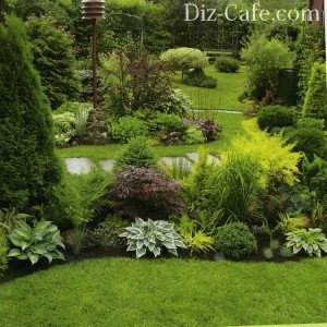 Бордюр для зеленой лужайки