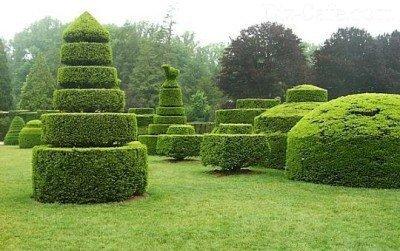 Сад скульптур топиари