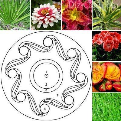 Из каких цветов сделать клумбу фото 41