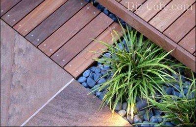 Декоративнолиственные растения – достойное украшение патио