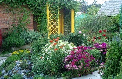 Цветочные клумбы – украшение любого участка