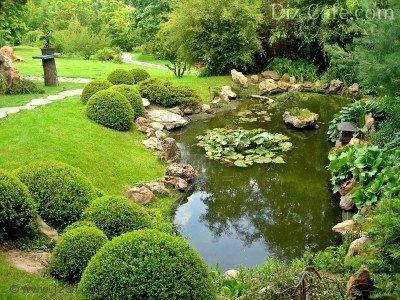 Пейзажный пруд в саду