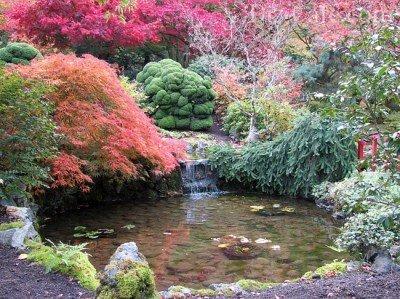 Пруд в пейзажном саду