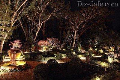 Акцентная подсветка деревьев