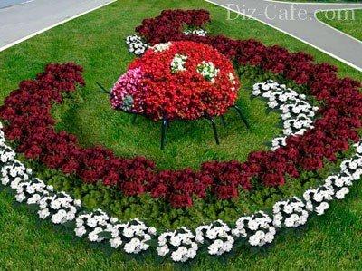 Схема как посадить цветы 225