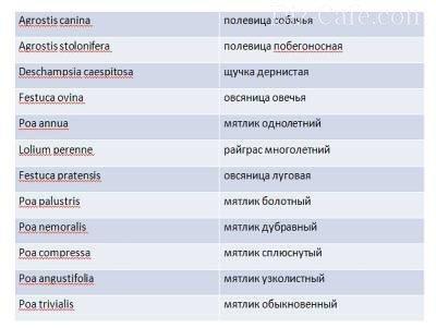 Таблица растений