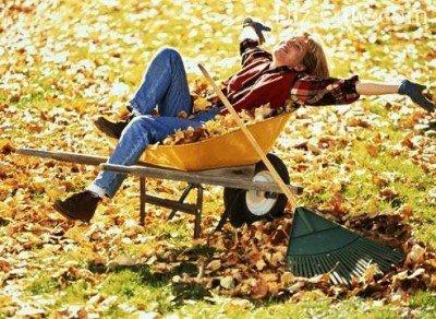 Осенние работы в саду: как подготовить свой огород к зимним холодам? –  Дизайн Кафе