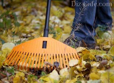 Осенние работы на даче: готовим сад и огород к зиме