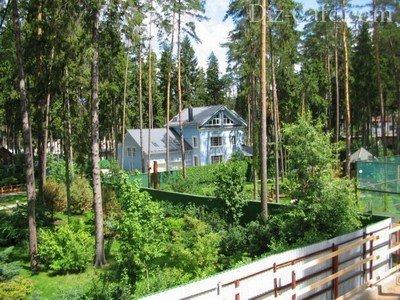 Сохранение древесной и кустарниковой растительности при строительстве объектов