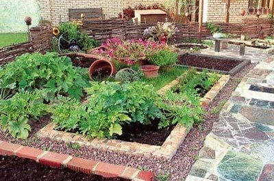 Декоративный огород – украшение участка