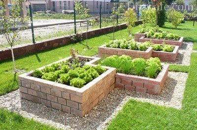 Дизайн огорода своими руками грядки фото 705