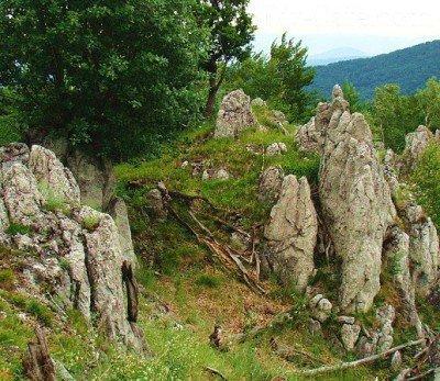 Идея для альпинария чешская скалка - горы Чехии