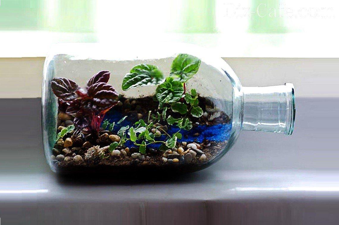 Сад в бутылке Flo