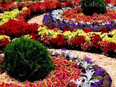 оформление клумб и цветников перед домом на даче правила примеры