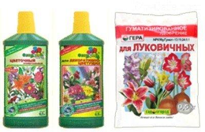 растения от паразитов на огороде