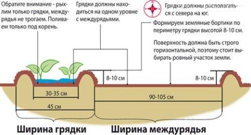 Схема устройства грядок