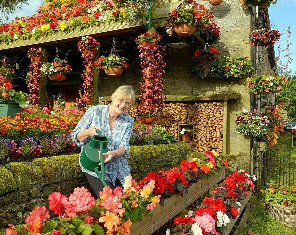 Как разбить и оформить красивый цветник перед домом на даче