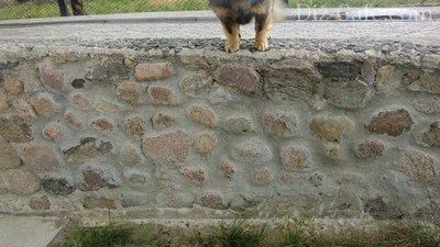 Неудачная стенка из камня