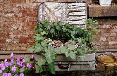 Новое применение старому чемодану
