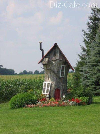 Дом из старого пня