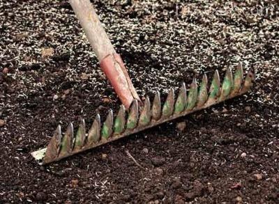 Рыхление почвы граблями