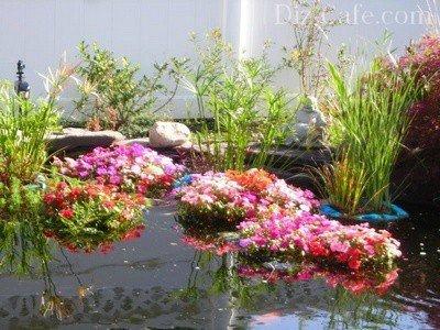 Несколько клумб с разными растениями