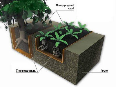 «Карманы» под растения