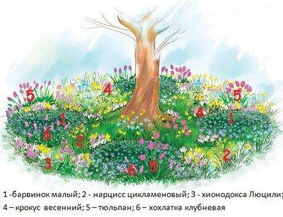 Клумба «Весенний калейдоскоп»