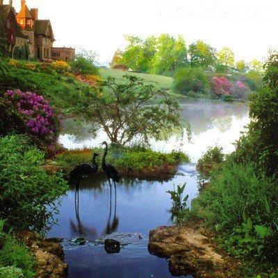 Красивый пейзажный пруд
