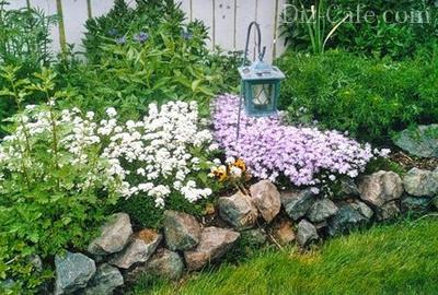 Цветники из засухоустойчивых растений